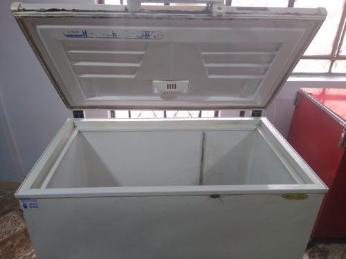 Congeladora Friolux / F-318 L