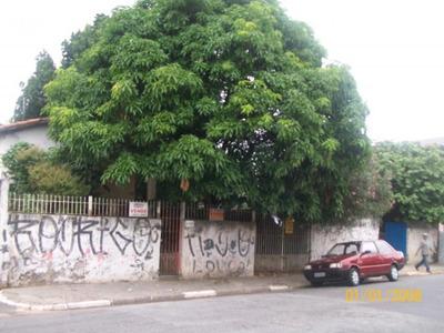 Terreno Para Venda Em São Paulo, Jardim Verônia - 1353