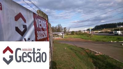 Galpão/ Depósito/ Pavilhão Localizado(a) No Bairro Caju Em Nova Santa Rita / Nova Santa Rita - G1613