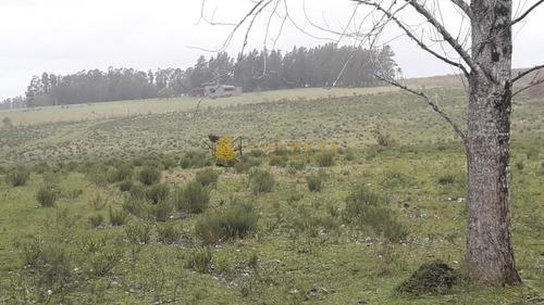 Campo Cerca De Pueblo Eden - Consulte !!!!!!- Ref: 3387