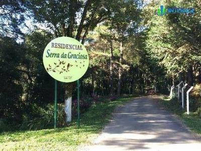 Terreno Residencial À Venda, Centro, Quatro Barras. - Te0116