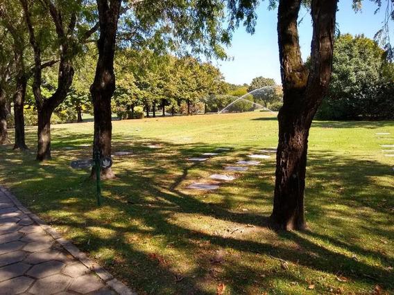 Boveda Parcela Jardin De Paz