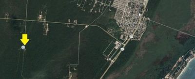 Terreno En Venta En Puerto Morelos, Quintana Roo, A 6 Km De La Playa