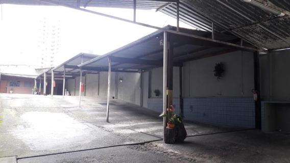 Terreno Para Alugar, 500 M² Por R$ 9.000/mês - Santa Paula - São Caetano Do Sul/sp - Te0394