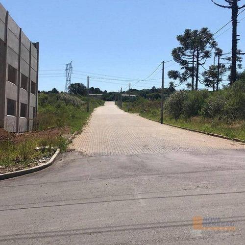 Terreno À Venda, 696 M² Por R$ 315.000 - Mariland - Caxias Do Sul/rs - Te0255