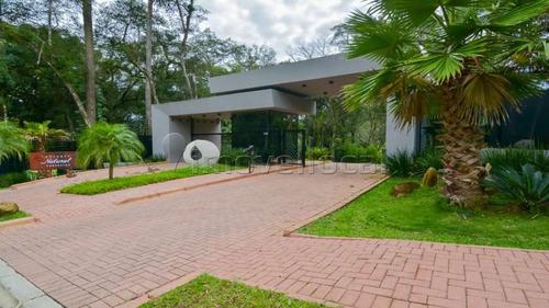 Terreno Em Condomínio À Venda Por R$ 1.780.000,00 No Bairro Santa Felicidade - Curitiba / Pr - Te0058