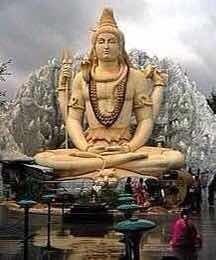 Semillas De Cañamo Shiva