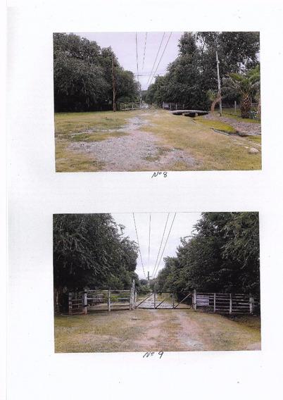 Campo De 99 Hs En Cosquin