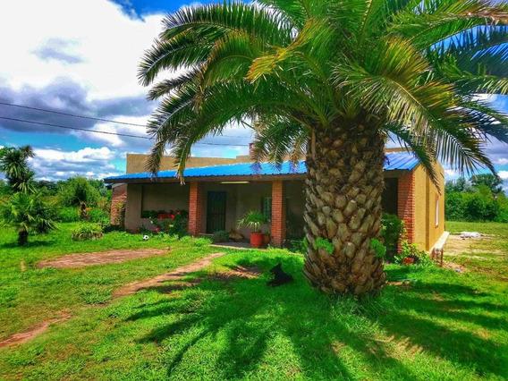 Casa Quinta Km40 Virrey Del Pino