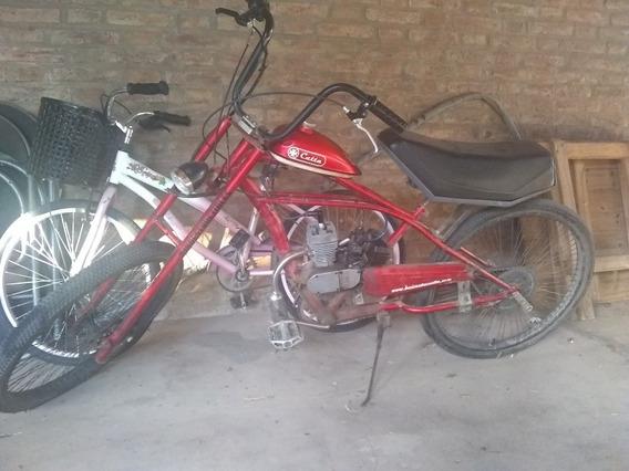 Catta Chopper
