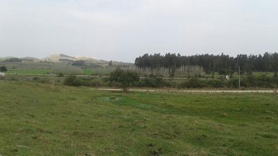Terreno De 25000 Mts A Ún Km De La Ciudad De Minas .