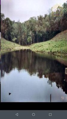 Fazenda À Venda, 5662800 M² Por R$ 850.000 - Rio Verde - Cananéia/sp - Fa0003