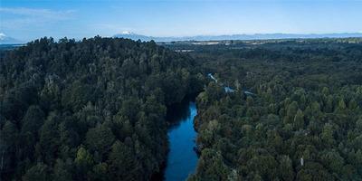 Parque Bosques Inundados