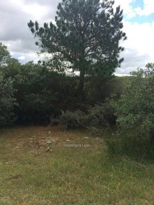 Oportunidad Campo Con Pozo Semisurgente Agua Mineral