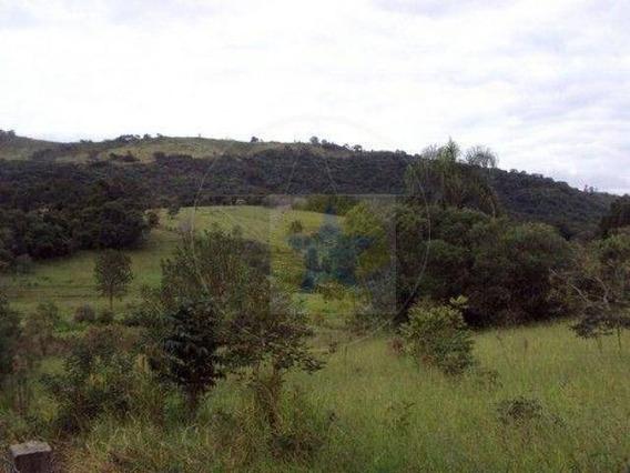 Terreno À Venda, 4600 M² Por R$ 650.000,00 - Ribeirão Dos Porcos - Atibaia/sp - Te0221