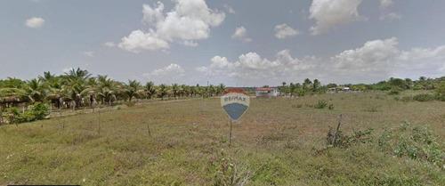 Terreno À Venda, 3600 M² Por R$ 960.000 - Zona Rural - Nísia Floresta/rn - Te0005