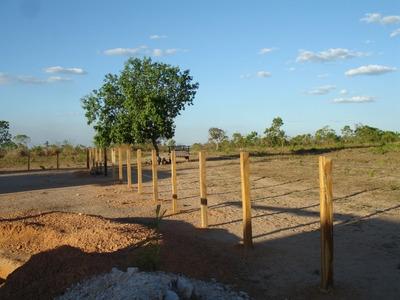 Fazenda A Venda Em Centenário - To (excelente P/ Pecuária) - 468