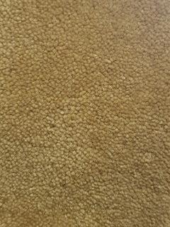 Carpeta Alfombra Pelo Corto Topacio 110 X 180