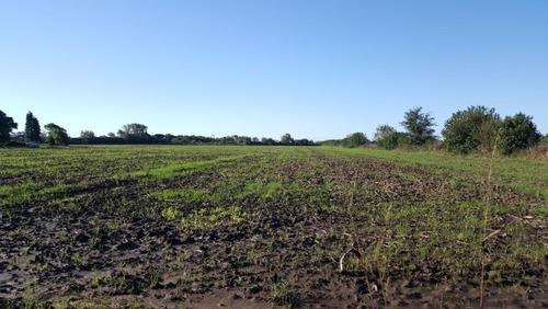 Campo En Venta En Córdoba