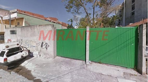 Terreno Em Vila Ede - São Paulo, Sp - 312083