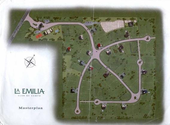 Terrenos O Lotes Venta La Emilia