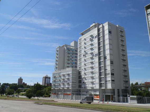 E-tower Avenue -campiglia