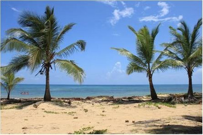Terrenos Turístico En Punta Cana