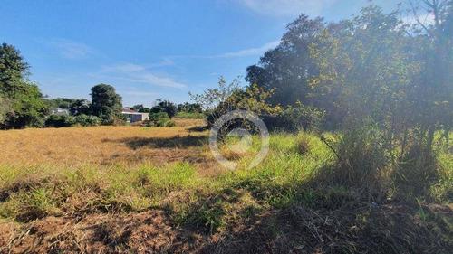Imagem 1 de 4 de Área De Terreno Na Quadra Da Avenida Bom Jardim Em Ivoti - Te0428