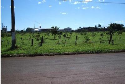 Área Comercial À Venda, Núcleo Industrial, Campo Grande. - Ar0007