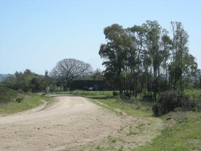 Estancia Ganadera, Campo Criador, Con Hermoso Casco Antiguo.