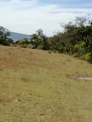 Terreno En Venta Ubicado En Tecali De Herrera Uso De Suelo Agrícola
