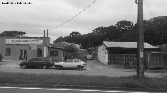 Terreno Para Venda Em Araucária, Costeira - Te0163