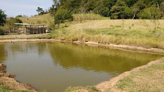 Chácara Rural À Venda, Rural, Tatuí. - Ch0042