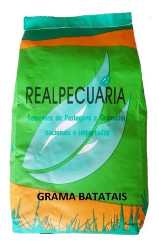 Sementes De Grama Batatais P/ Gramados(1 Kg Rende Até 150m2)