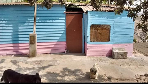1 Dormitorio De 21 Metros Cuando, 1 Baño, Sala, Un Jardín