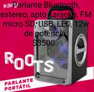 Parlante Kanji Roots Bluetooth Karaoke