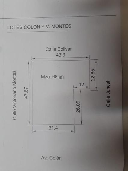 Importante Lote En Alquiler Z/ Av, Champagnat Y Av. Colón