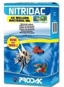Suplemento Prodac Ativador De Biologia Nitridac 500ml
