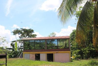 Vendo-permuto Finca Chicoral Tolima