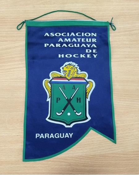 Banderin Asociacion Amateur Paraguaya De Hockey
