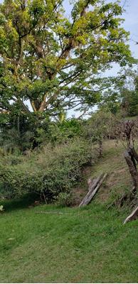 Sitio Na Serra Da Paulista, São João Da Boa Vista
