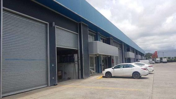 Amplia Galera En Alquiler En Tocumen Panama Cv