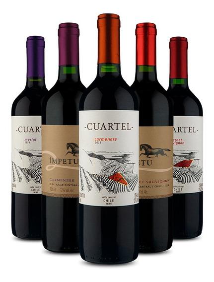 Kit 5 Chilenos Tintos (5 Vinhos)