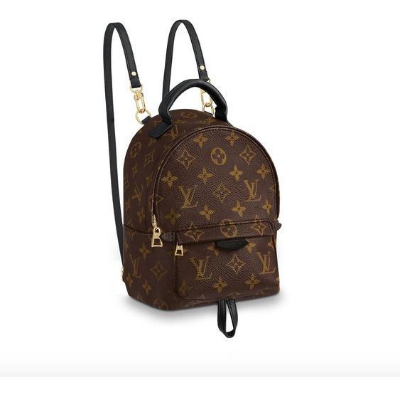 Mochila Louis Vuitton Palm Springs Backpack Mini