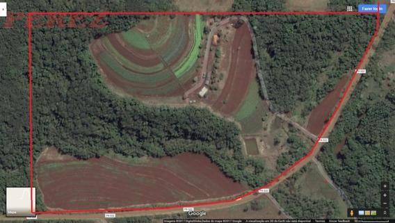 Chácaras_sítios_fazendas Para Venda - 13650.6025