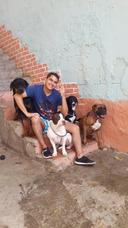 Pensión Hospedaje Elangeldelasmascotas Caninos Todo El Año