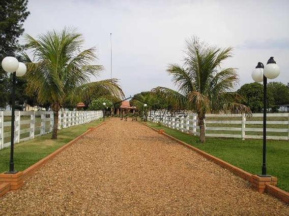 Fazenda Em Avaré/1742