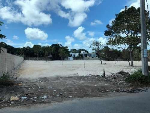 Renta De Terreno Para Encierro Sobre Av. Olivos Cancún