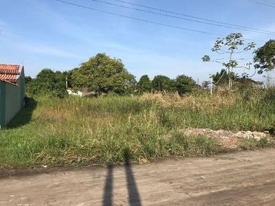 Terreno No Jardim Regina, 1,5 Km Do Mar, Em Itanhaém/sp