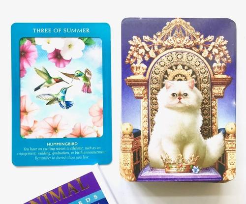 Animal Tarot Cards A 78 Card Deck And Guidebook Presente Mercado Livre